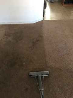 Before and After - Residential Carpet Cleaning