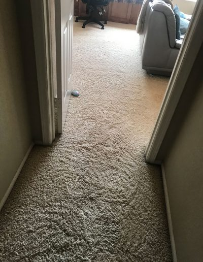 After - Clean Carpet in Bedroom and Hallway