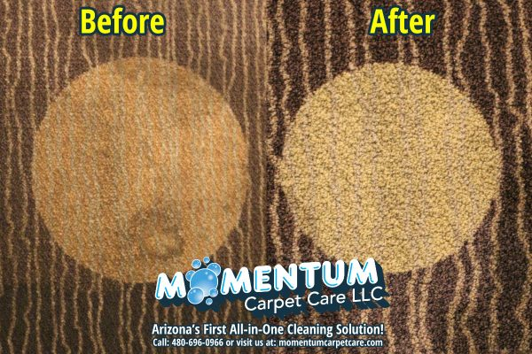 Before and After – Main Event Commercial Carpet Cleaning Job