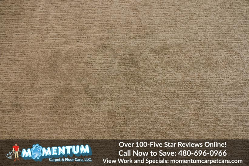 Stain Removal Carpet Cleaning Service