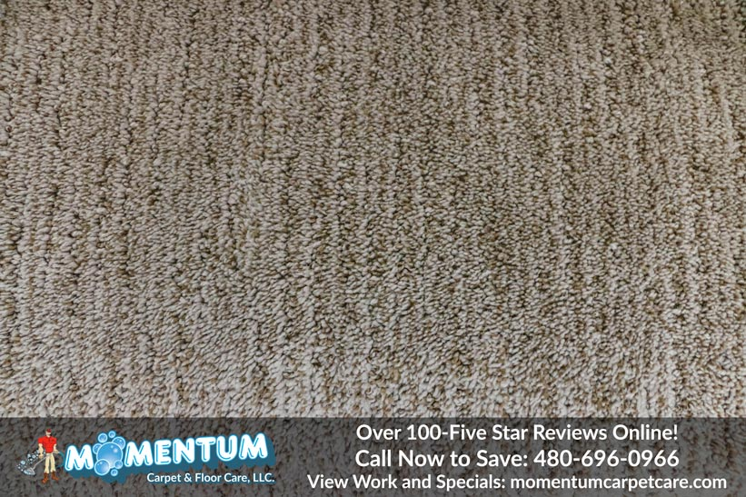 Stain Removal Carpet Cleaning